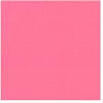 Bazzill Basics - 12 x 12 Cardstock - Smooth Texture - Watermelon Sensation
