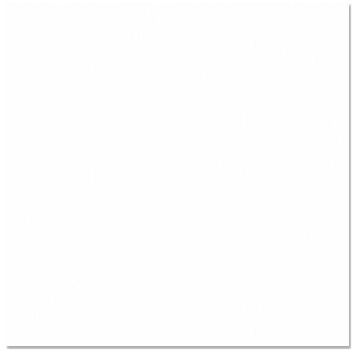 Bazzill Basics - 12 x 12 Cardstock - Grasscloth Texture - Avalanche
