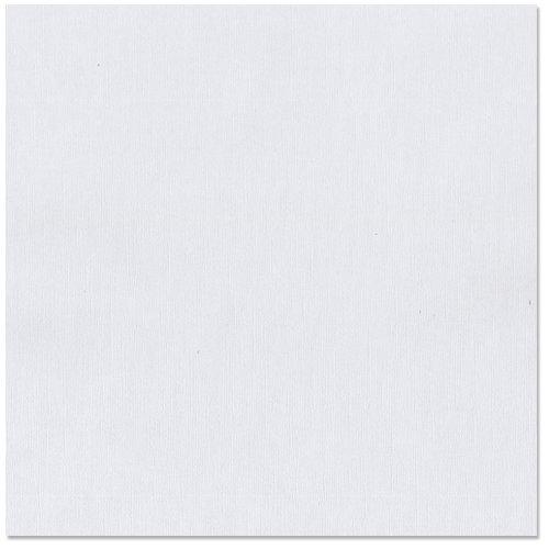 Bazzill Basics - 12 x 12 Cardstock - Canvas Texture - Vintage