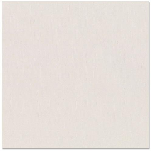 Bazzill Basics - 12 x 12 Cardstock - Canvas Texture - New York City, CLEARANCE