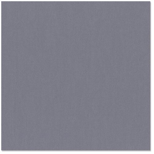Bazzill Basics - 12 x 12 Cardstock - Canvas Texture - Thunder