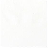 Bazzill Basics - 12 x 12 Vellum - White