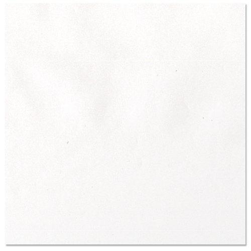 Bazzill - 12 x 12 Vellum - Platinum