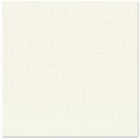 Bazzill Basics - 12 x 12 Cardstock - Canvas Bling Texture - GlassSlipper