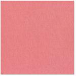Bazzill Basics - 12 x 12 Cardstock - Canvas Bling Texture - Feather Boa