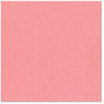 Bazzill Basics - 12 x 12 Cardstock - Canvas Bling Texture - June Birthstone