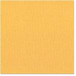 Bazzill Basics - 12 x 12 Cardstock - Canvas Bling Texture - 24 Karat, CLEARANCE