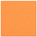 Bazzill Basics - 12 x 12 Cardstock - Canvas Bling Texture - Tootsie