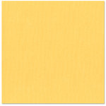Bazzill Basics - 12 x 12 Cardstock - Canvas Bling Texture - Hollywood