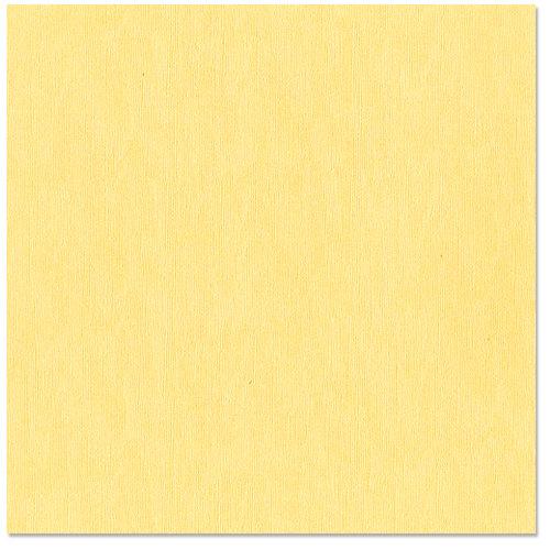 Bazzill Basics - 12 x 12 Cardstock - Canvas Bling Texture - November Birthstone
