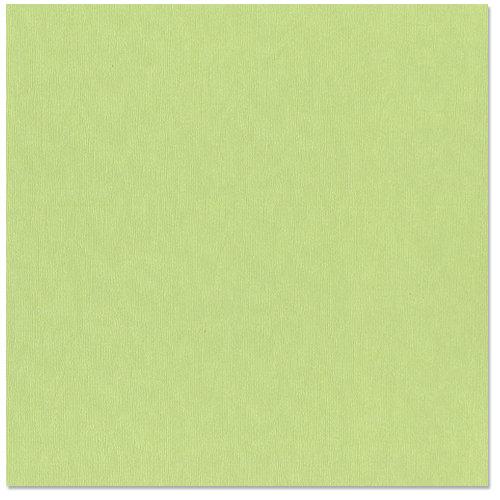 Bazzill Basics - 12 x 12 Cardstock - Canvas Bling Texture - Petty Cash