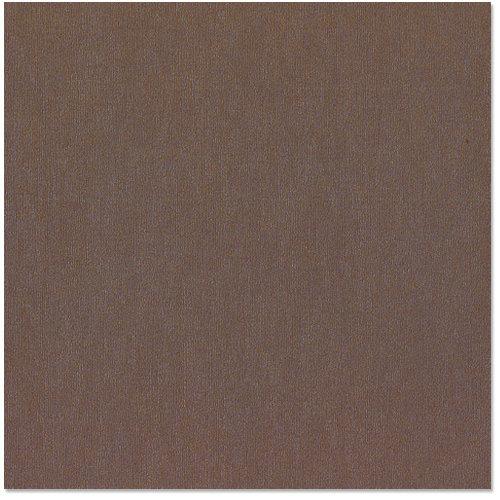 Bazzill Basics - 12 x 12 Cardstock - Canvas Bling Texture - Sugar Daddy