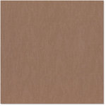 Bazzill - 12 x 12 Cardstock - Canvas Bling Texture - Flat Broke