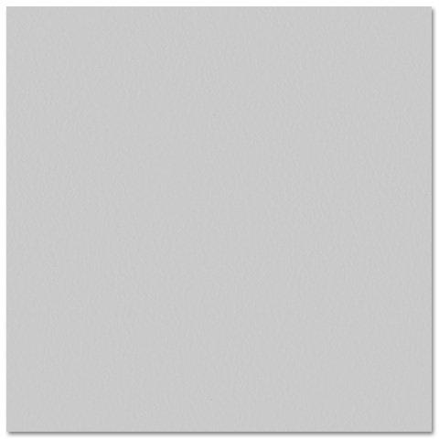 Bazzill - Prismatics - 12 x 12 Cardstock - Dimpled Texture - Gray