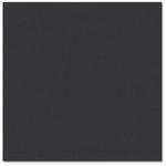 Bazzill Basics - Prismatics - 12 x 12 Cardstock - Dimpled Texture - Black