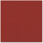 Bazzill Basics - Prismatics - 12 x 12 Cardstock - Dimpled Texture - Blush Red Dark