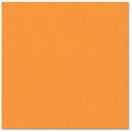 Bazzill - Prismatics - 12 x 12 Cardstock - Dimpled Texture - Intense Orange