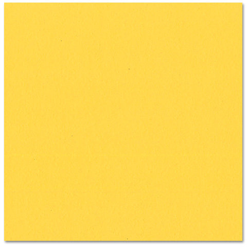 Bazzill - Prismatics - 12 x 12 Cardstock - Dimpled Texture - Intense Yellow