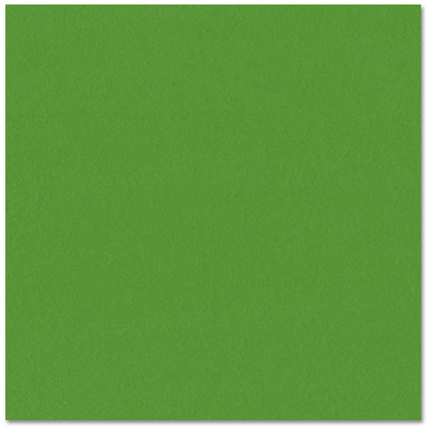 Bazzill Basics - Prismatics - 12 x 12 Cardstock - Dimpled Texture - Classic Yellowgreen