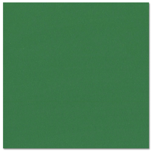 Bazzill - Prismatics - 12 x 12 Cardstock - Grasscloth Texture - Classic Green
