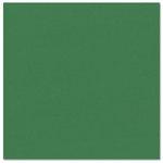 Bazzill Basics - Prismatics - 12 x 12 Cardstock - Grasscloth Texture - Classic Green