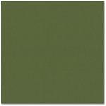 Bazzill - Prismatics - 12 x 12 Cardstock - Dimpled Texture - Herbal Garden Dark