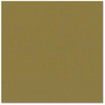 Bazzill Basics - Prismatics - 12 x 12 Cardstock - Dimpled Texture - Spring Willow Dark
