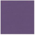 Bazzill Basics - Prismatics - 12 x 12 Cardstock - Grasscloth Texture - Classic Purple