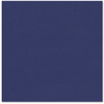 Bazzill - Prismatics - 12 x 12 Cardstock - Dimpled Texture - Stormy Dark