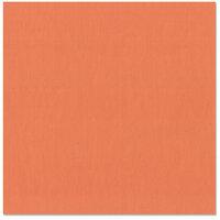 Bazzill Basics - 12 x 12 Cardstock - Grasscloth Texture - Arroyo