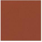 Bazzill Basics - 12 x 12 Cardstock - Canvas Texture - Haley