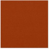 Bazzill Basics - 12 x 12 Cardstock - Grasscloth Texture - Red Rock