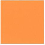 Bazzill - 12 x 12 Cardstock - Orange Peel Texture - Hazard