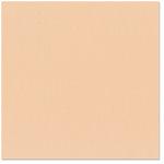Bazzill Basics - 12 x 12 Cardstock - Canvas Texture - Peachpuff
