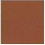 Bazzill Basics - 12 x 12 Cardstock - Canvas Texture - Sienna