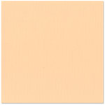 Bazzill Basics - 12 x 12 Cardstock - Canvas Texture - Peach, CLEARANCE