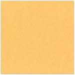 Bazzill Basics - 12 x 12 Cardstock - Canvas Texture - Papaya