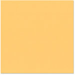 Bazzill - 12 x 12 Cardstock - Criss Cross Texture - Melon