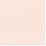 Bazzill Basics - 12 x 12 Cardstock - Canvas Texture - Adobe