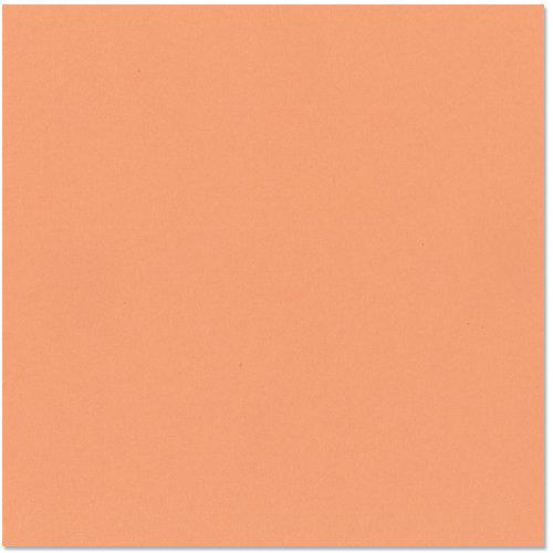 Bazzill - 12 x 12 Cardstock - Canvas Texture - Arizona
