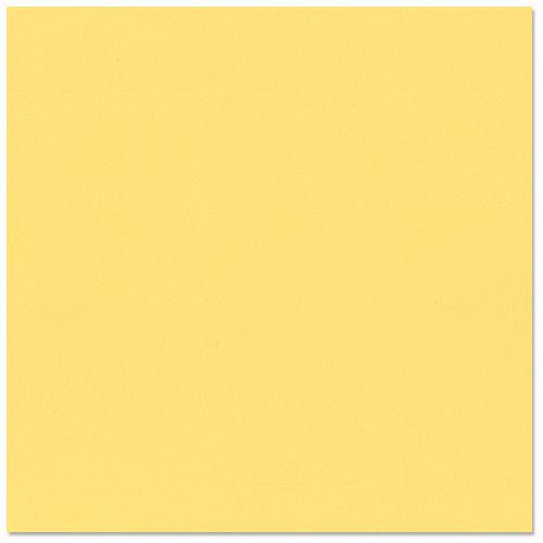 Bazzill Basics - 12 x 12 Cardstock - Grasscloth Texture - Pollen