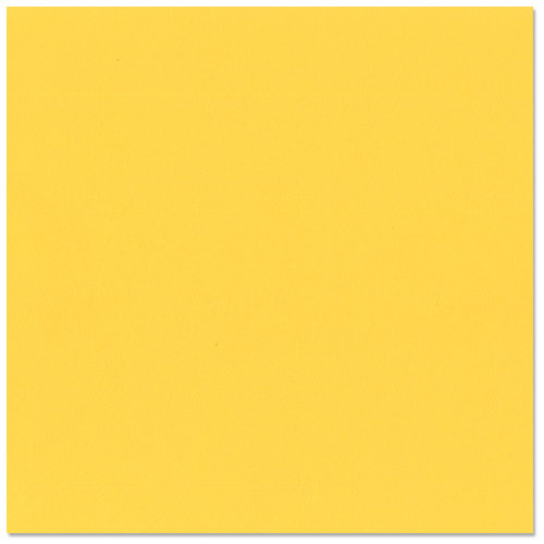 Bazzill Basics - 12 x 12 Cardstock - Grasscloth Texture - African Daisy