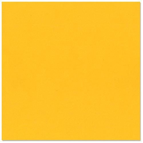 Bazzill Basics - 12 x 12 Cardstock - Grasscloth Texture - Desert Marigold