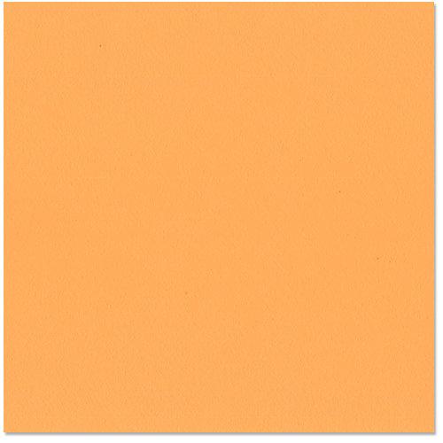 Bazzill Basics - 12 x 12 Cardstock - Orange Peel Texture - Creamsicle
