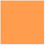 Bazzill - 12 x 12 Cardstock - Smooth Texture - Tangelo Blast