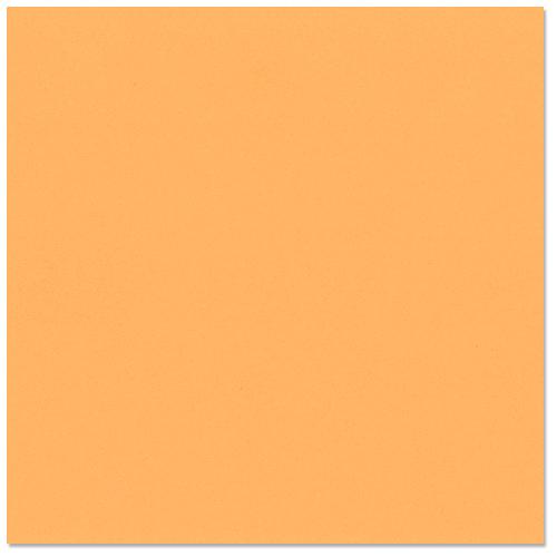 Bazzill Basics - 12 x 12 Cardstock - Smooth Texture - Marmalade Blast