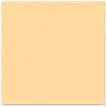 Bazzill Basics - 12 x 12 Cardstock - Smooth Texture - Papaya Blast, CLEARANCE