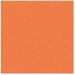 Bazzill - 12 x 12 Cardstock - Canvas Texture - Hopi