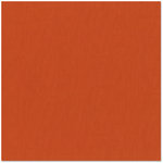 Bazzill - 12 x 12 Cardstock - Canvas Texture - Saltillo