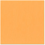 Bazzill - 12 x 12 Cardstock - Canvas Texture - Apricot